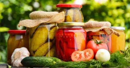 fermente-besinler